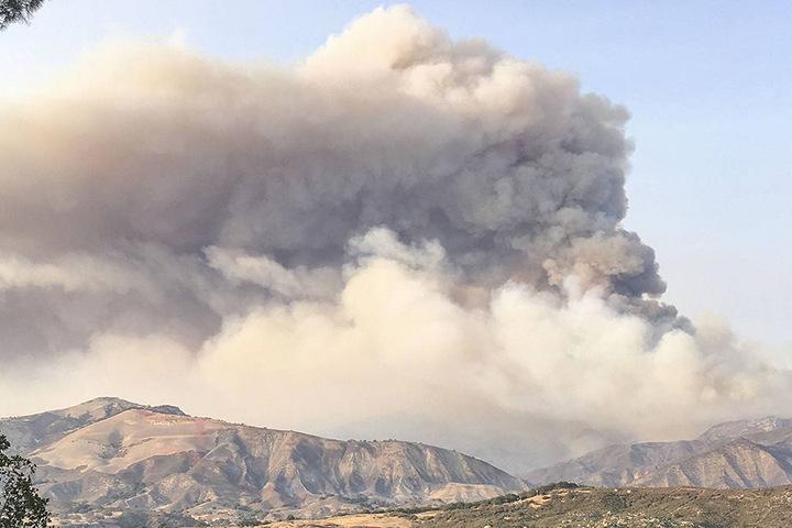 Tausende Hektar wurden durch die Flammen bereits verwüstet.