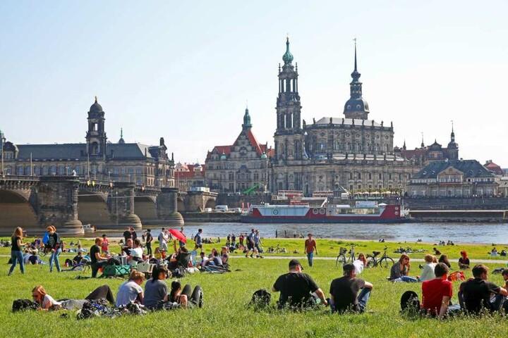 Insgesamt 12 Grillplätze und 5 Lagerfeuerstellen werden von der Stadt für die Dresdner bereitgestellt.