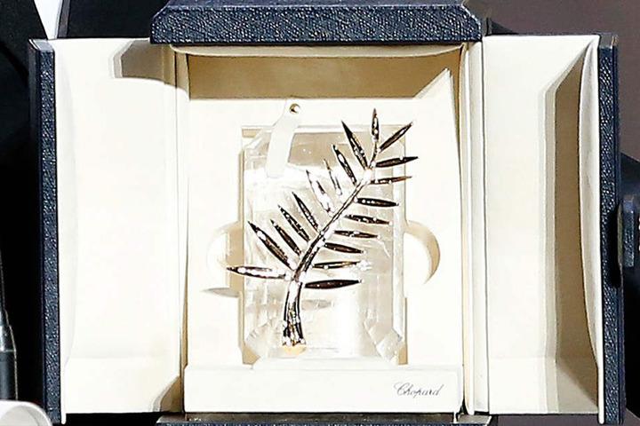 Jährlich wird in Cannes die Palme d'Or verliehen.