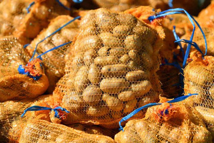 Wegen der Dürre sind Kartoffeln zurzeit mehr als 50 Prozent teurer als im Vorjahr (Symbolbild).