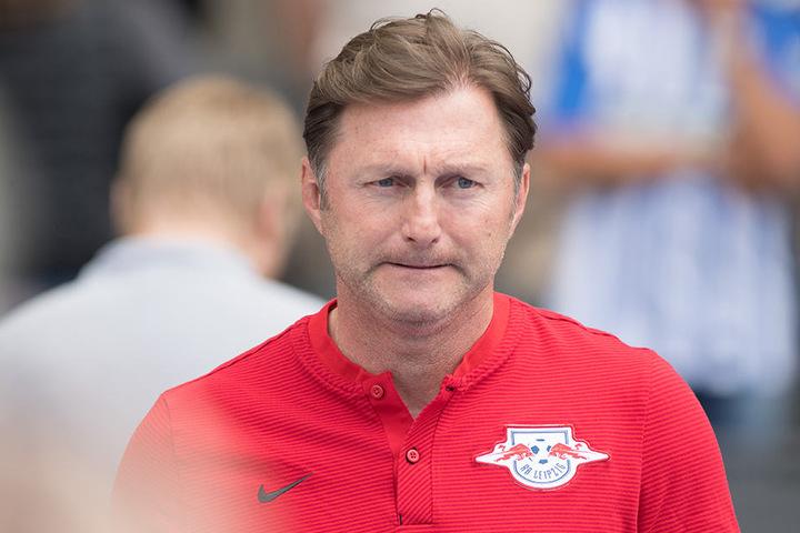 Das Amt des Cheftrainer ist seit der Entlassung von Ralph Hasenhüttl verwaist.