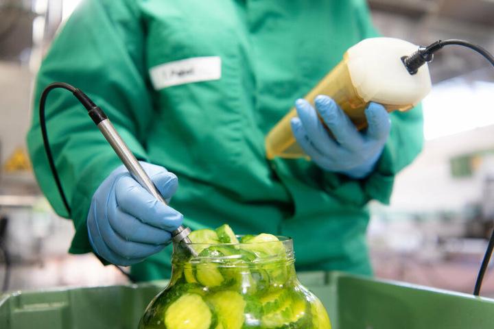 Damit Gewürzgurken in einwandfreier Qualität beim Konsumenten landen, prüfen Fachkräfte für Lebensmitteltechnik, ob die Temperatur beim Aufguss stimmt.