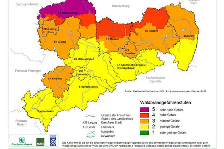 Aktuell ist die Waldbrandgefahr vor allem im Norden des Freistaats sehr hoch.