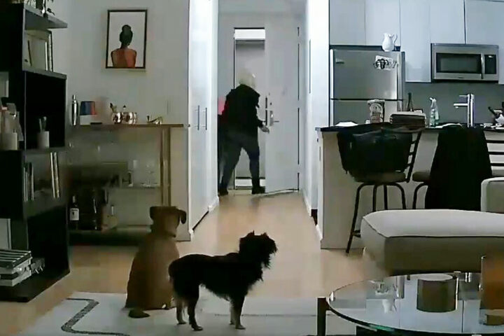Die Diebin sah zu, dass sie wegkam.