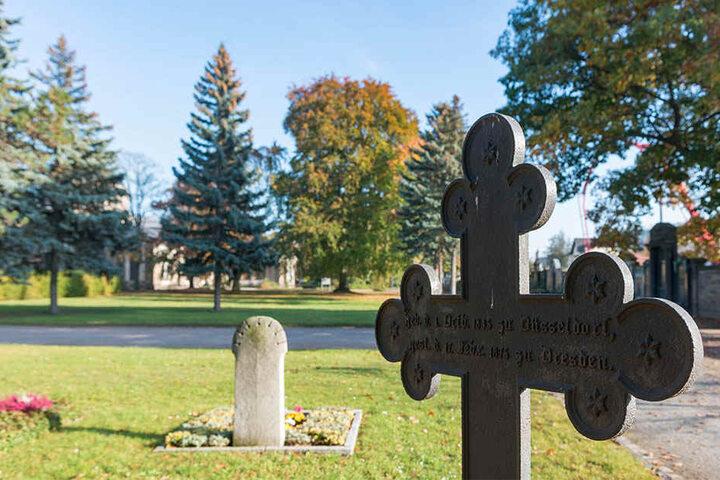 So wie hier auf dem Johannesfriedhof in Tolkewitz könnten die großen Wiesen für den Ernstfall herhalten.