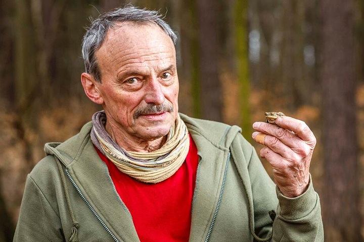 Ehrenamtler Lothar Edelmann (76) mit einer geretteten Kröte.