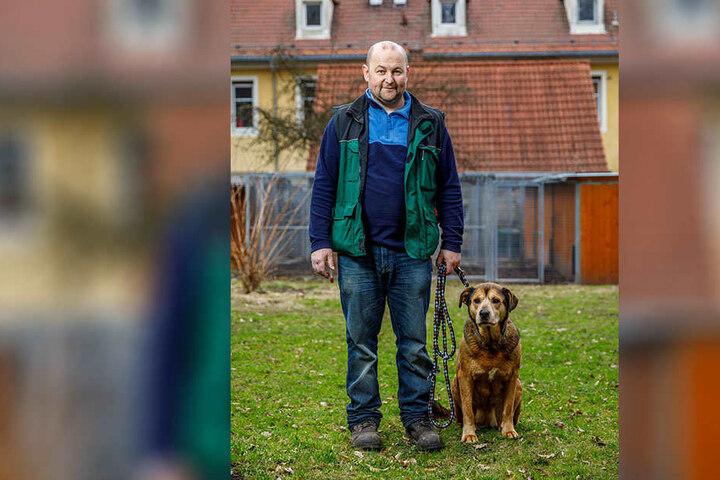 Hundebetreuer Rico Klann hat einen guten Draht zu Bori (10). Wird das Sorgenkind nicht bald vermittelt, könnte das Tierheim ihr Zuhause auf Lebenszeit werden.