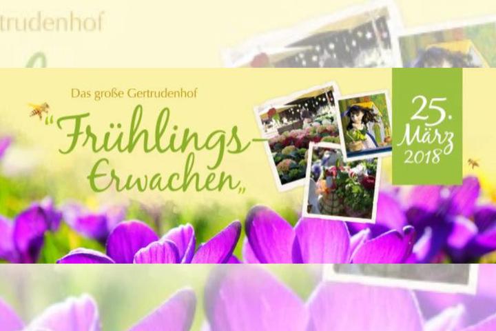 Der Gertrudenhof feiert das große Frühlings-Erwachen! Wir drücken die Daumen, dass das Wetter mitspielt.