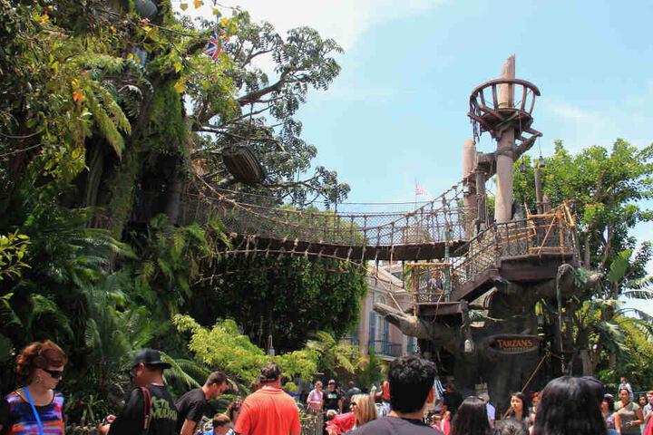 """Die Disneyland-Attraktion """"Tarzans Baumhaus"""" ist nun gesperrt. Sie gibt es nur von unten zu sehen."""