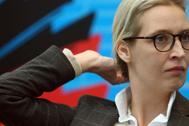 Gegen die AfD-Fraktionsvorsitzende Alice Weidel und andere Mitglieder ihres Kreisverbandes am Bodensee wird wegen illegaler Wahlkampfspenden ermittelt.