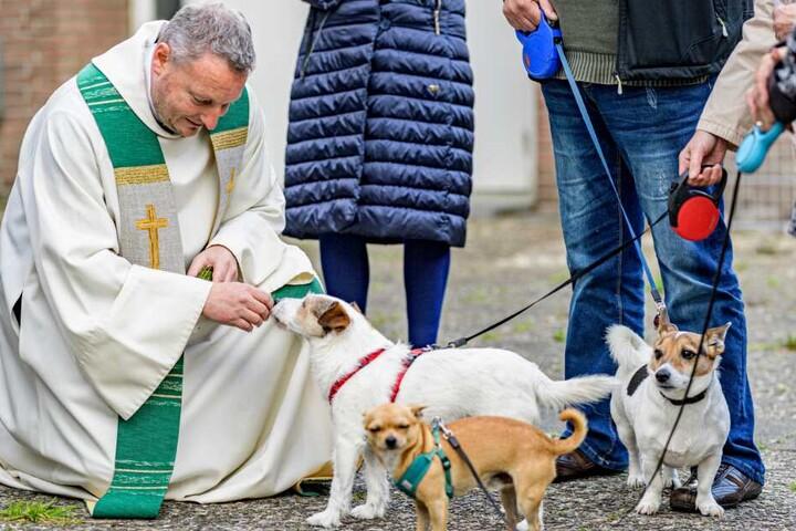 Pastor Alexander Görke, katholischer Pastor der Kirche in Jenfeld, segnet Hunde vor dem Kircheneingang.