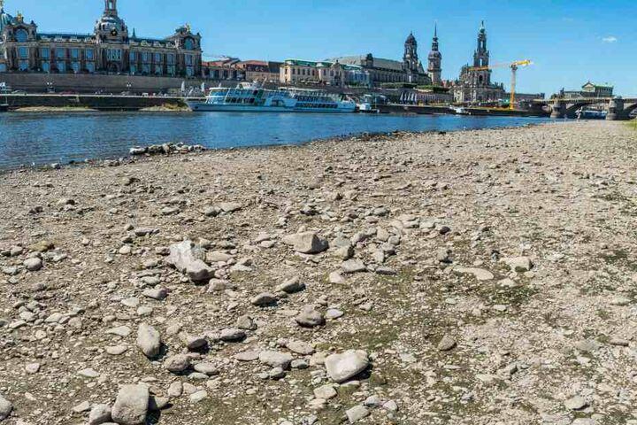 So sah die Elbe im Juli aus.