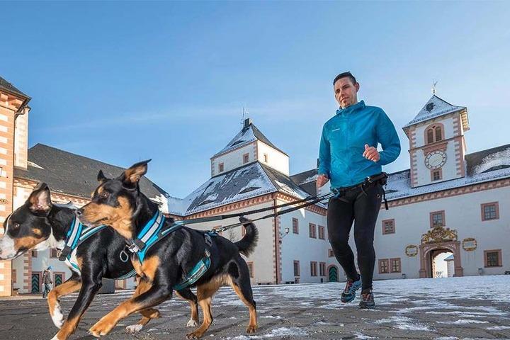 Sascha Winkler (30) mit seinen Hunden Elinor (2) und Bella (6, v.l.) am Schloss Augustusburg, dem Ziel des Canicross-Berglaufs.