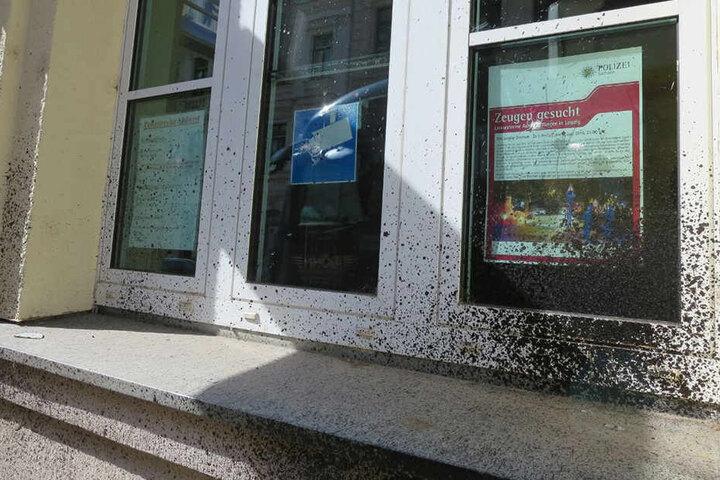 Mit einer Steinschleuder wurden die Fenster des Reviers beschossen.