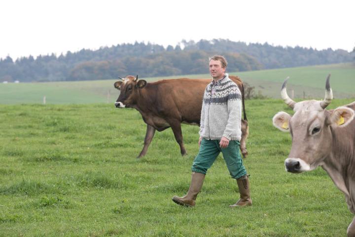 Landwirt Bernhard Steinert (53) bietet seinen Milchkühen im Hohnsteiner Ortsteil Cunnersdorf ein glückliches Leben.