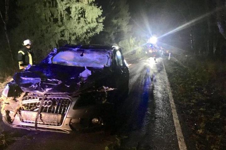 Der Fahrer des Audi bemerkte einen umgestürzten Baum zu spät, er wurde glücklicherweise nicht verletzt.