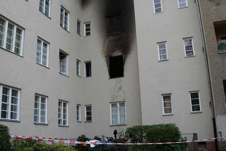 Bei dem Brand in der ersten Etage des Hauses starb eine Katze.
