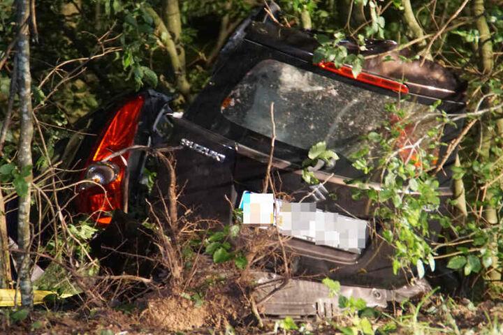Der Suzuki kam in einem Wald zum Stehen.