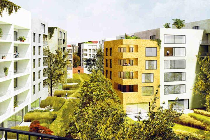 In den Innenhöfen gibt es kleine Gärten, die Dächer werden begrünt
