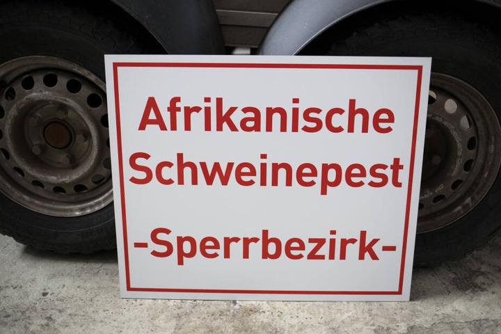"""Ein Schild mit der Aufschrift """"Afrikanische Schweinepest - Sperrbezirk- """" steht bei einem Rundgang durch das hessische Zentrallager für Tierseuchenbekämpfungsmaterial an einen Tieranhänger gelehnt."""