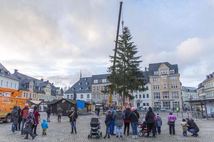 Der Weihnachtsbaum wurde am Dienstagnachmittag aufgestellt.