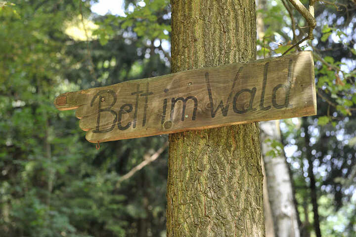 Hier gehts zum Bett im Wald.