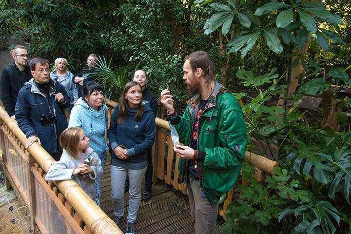 Erklärbär im Tropenhaus: Zoopädagoge Jan Klösters (35, r.) zeigt den Morgenführungsteilnehmern Faultier-Nägel.