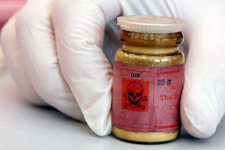 Auch Gift wird zur Bekämpfung der Tiere eingesetzt (Symbolfoto).
