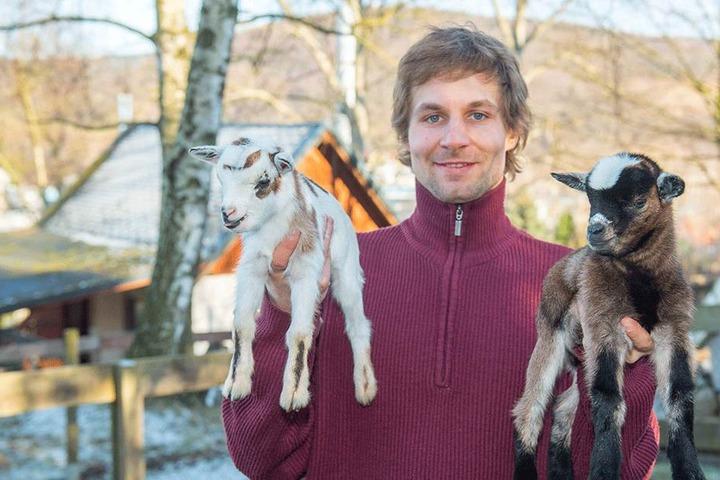 """""""Ziegen""""-Peter Höhmke (31) ist stolz: Der Pfleger konnte sechs kleine Neuankömmlinge präsentieren."""