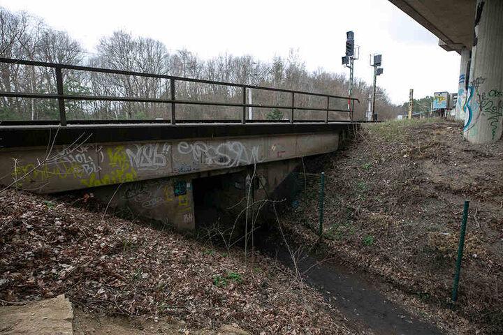 Eine Hoffnung der Tunnel-Fans: Ein Radweg könnte Fördermittel und damit eine Sanierung ermöglichen.