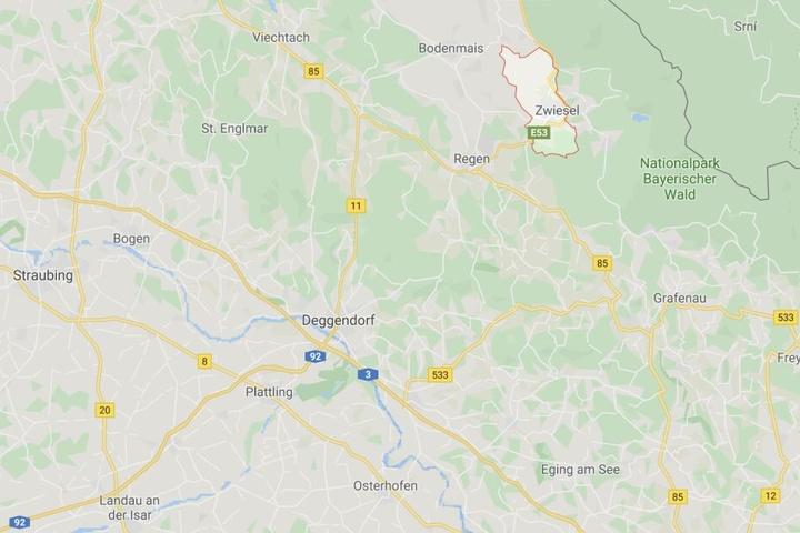 Meldung eines Autofahrers: Streift etwa eine gefährliche Großkatze durch den Bayerischen Wald?