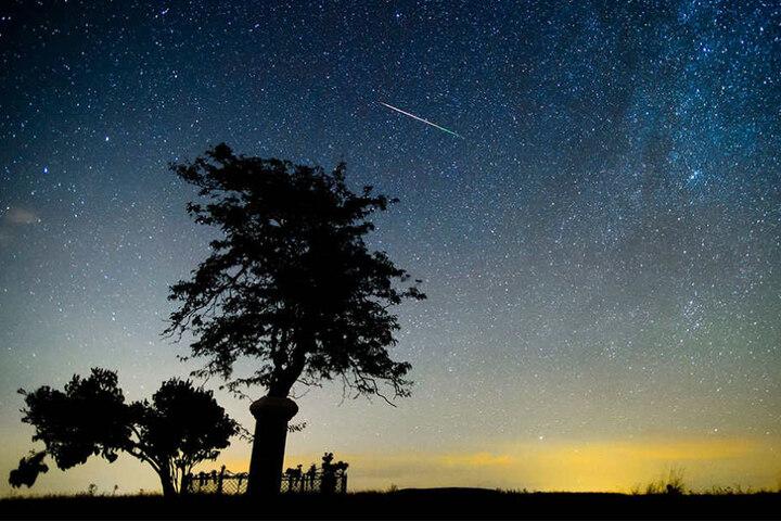 Schnappt euch bei gutem Wetter eine Decke und beobachtet das Himmelsspektakel im Park. Für Pärchen eine romantische Gelegenheit. (Symbolbild)