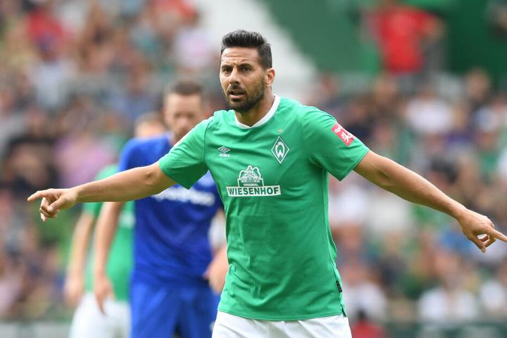 Endet seine Karriere etwa sogar mit dem Abstieg des SV Werder Bremen?