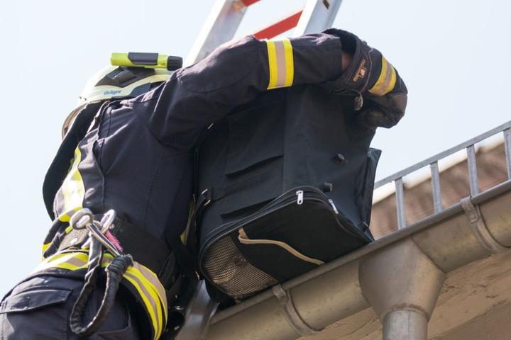 Die Kameraden holten das Tier mit einem Tragekorb vom Dach herunter.