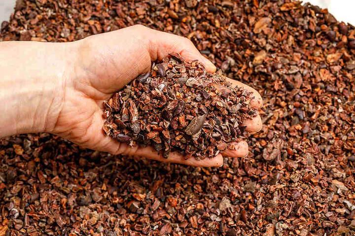 """Die zerkleinerten Kakaobohnen (""""Nips"""") werden noch von der Schale befreit, dann zu einer feinen Kakaomasse gemahlen."""