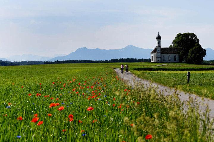Herrliches Wetter am Samstag in Bayern: Radler fahren auf die St. Andreas Kirche zu, dahinter ist das Ammergebirge und das Wetterstein zu sehen.