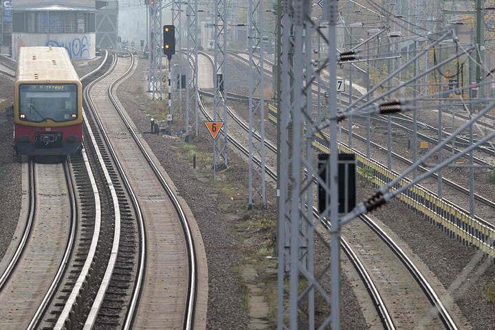 Fährt in Richtung Ostkreuz: Eine S-Bahn aus Karlshorst.