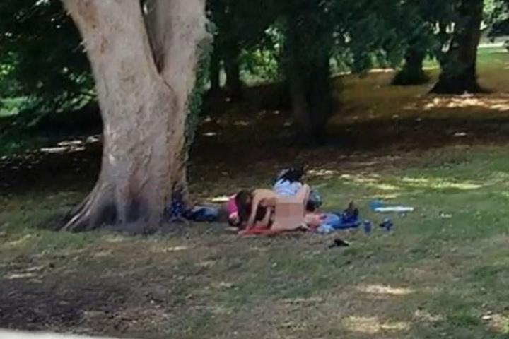 Am helllichten Tag treiben es die Pärchen in dem Park.