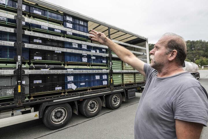 Problem für Tamas Pél (56): Sein Laster war zu hoch, er musste umladen.