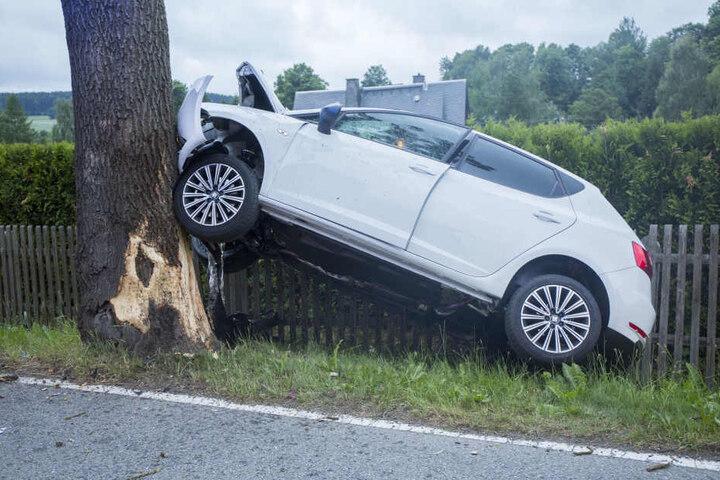 Der Seat war frontal in den Baum gekracht.