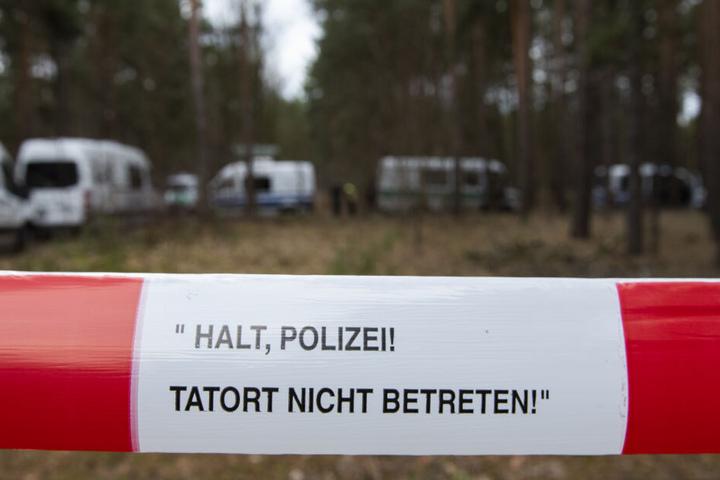 Drei Tage lang durchkämmte die Polizei einen Brandenburger Wald.