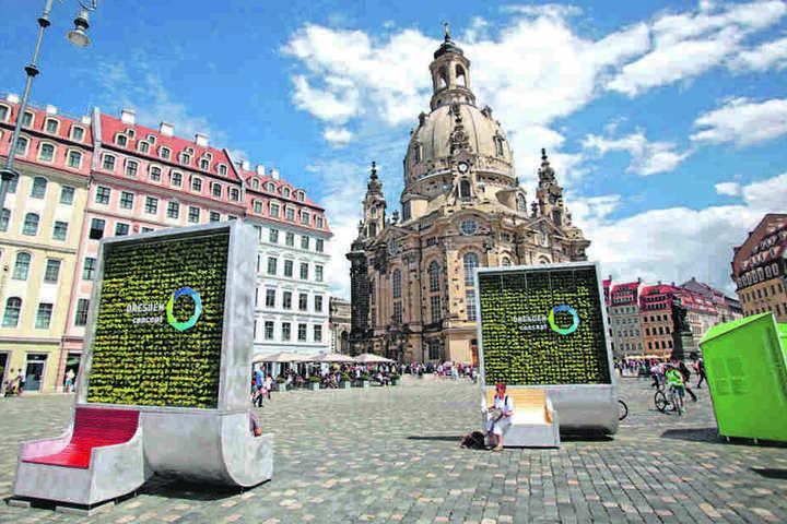 """Die Dresdner Firma """"GreenCitySolutions"""" hat Bänke mit bepflanzten Rücklehnen  entwickelt, die Feinstaub aus der Luft filtern."""