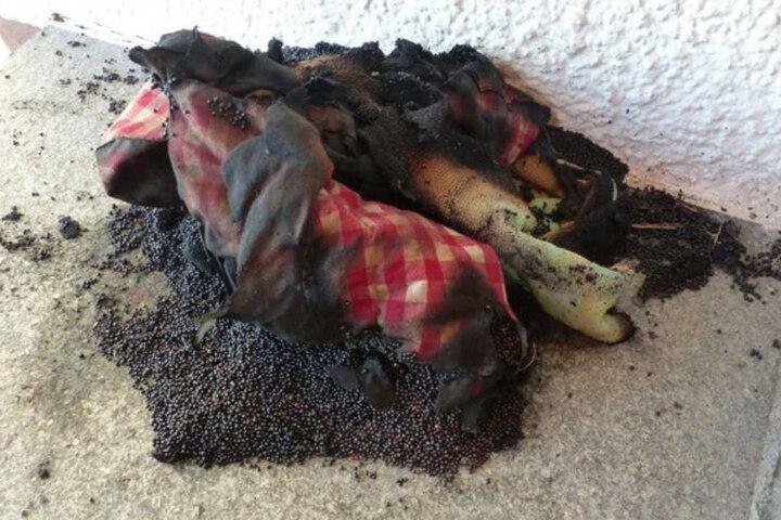 Ein überhitztes Körnerkissen hat den folgenschweren Brand ausgelöst.