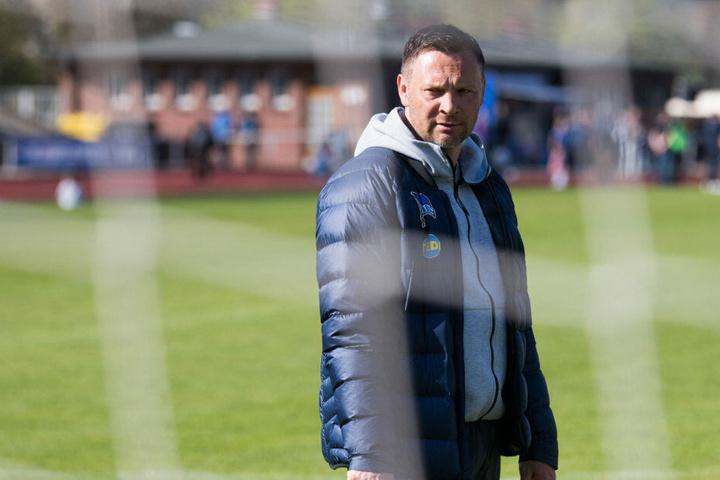 Pal Dardai ist im Sommer nicht mehr Trainer von Hertha BSC.