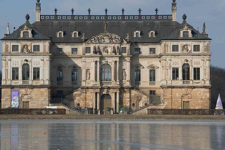Im Palais im Großen Garten findet die Frühlingsblumenschau seit 2006 alle zwei Jahre statt.