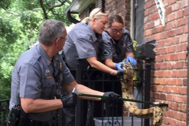 Die Polizei griff beherzt ein.