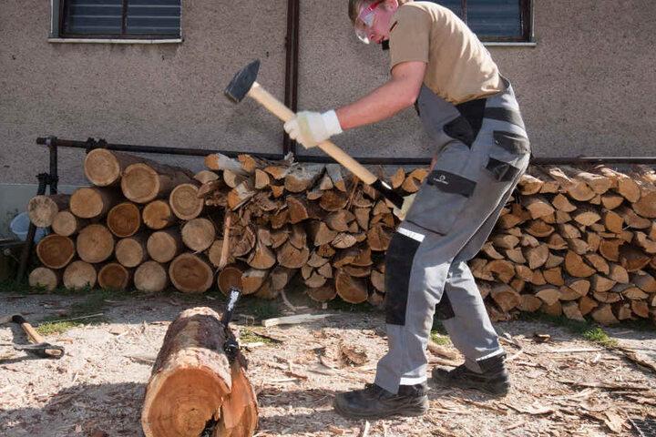 Wieso will der denn nicht?! Phillip (20) muss den Hammer rausholen, um den widerborstigen Holzscheit zu spalten.