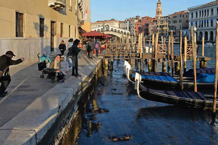 Auch im Canale Grande ist das Wasser stark zurück gegangen, die Gondeln liegen im Schlamm. Die Wasserbusse können hier allerdings noch fahren.