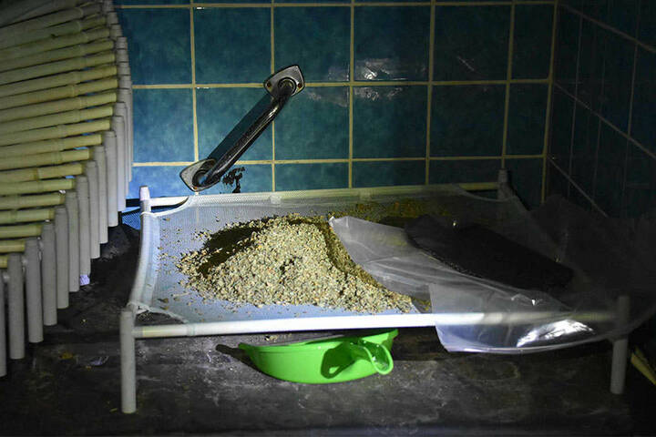 Überall fanden die Beamten Marihuana.