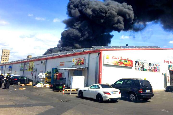 Menschen wurden in dem Feuer zum Glück nicht verletzt.